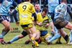 7ag_2203rugby-sms-renage