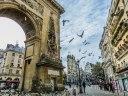 Les pigeons occupent une place importante à Paris ©Slam