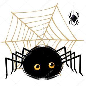 les 8 pattes de l'araignée