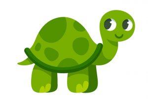 yoga-enfant-tortue