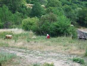 Voyage en Bulgarie orthodoxe : du monastère de Rojen à Melnik 48