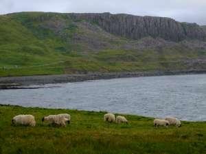 L'Ecosse en camping-car en itinérant : région d'Edimburgh 71