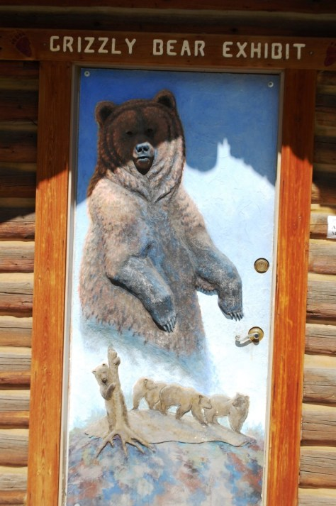 Grizzly Bear Exhibit at the Old Trail Museum