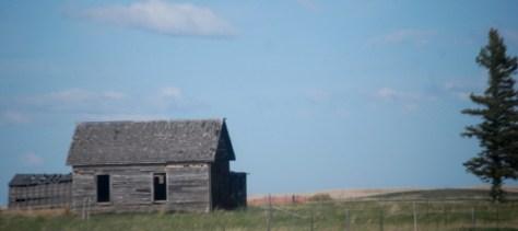 Old cabin near Pendroy, Montana