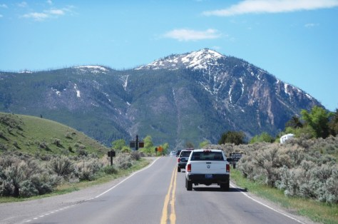 Road into Mammoth Hot Springs