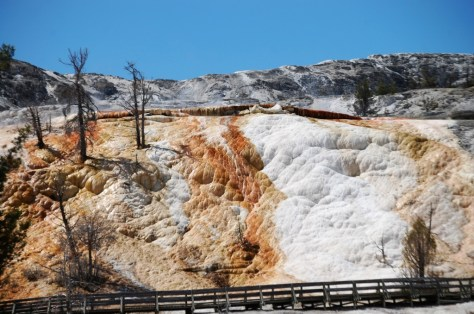 A shot of Mammoth Hot Springs