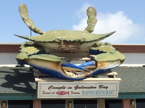 Giant Crab in Galveston