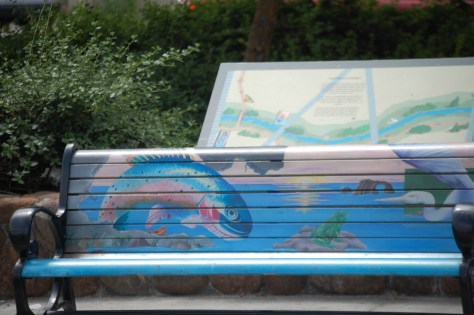 Another portion of lovely park bench in Santa Rosa, CA