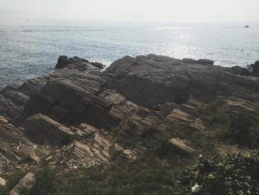 The rocky shores of Port Elizabeth, ME (photo by Marissa Noe)