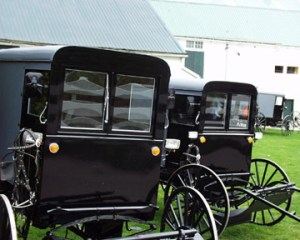 Amish Buggy Sales lot just outside of Intercourse