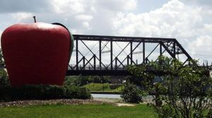 Big Apple Medina, NY