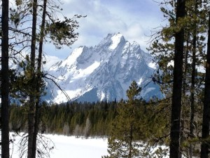 Mt. Moran in the Grand Tetons as seen from Colter Bay Lodge