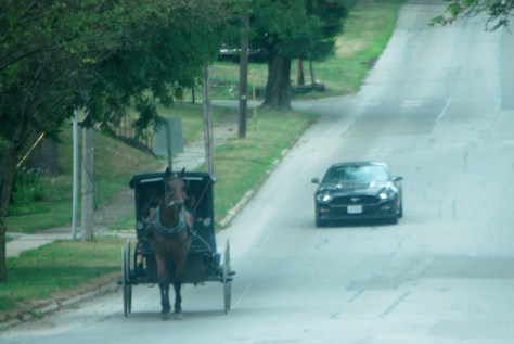 An Amish buggy takes on a Mustang on a road in Fredericksburg
