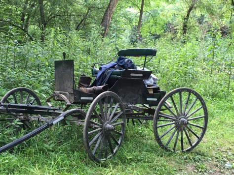 An Amish Buggy parked by the Mohican River while the Amish youth who brought it in were out swimming