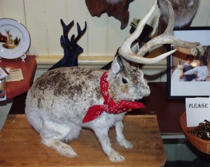 Wyoming Jackalope