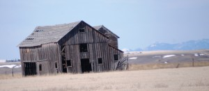 Old Barn west of Lewistown