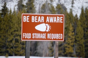 Be Bear Aware Sign