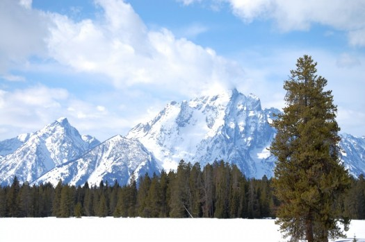 Mt. Moran from US 89