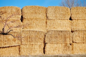 Hay stacked in the fields near Ashby, ID