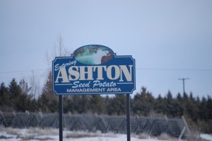 Welcome to Ashton