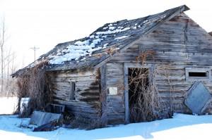 Old Cabin near Drummond