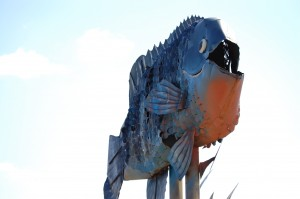 """Giant Blue Gill at """"Fisherman's Dream"""""""