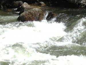Raging Rapids on the Salmon