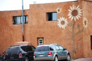 Flowery Walls in Westcliffe, Colorado