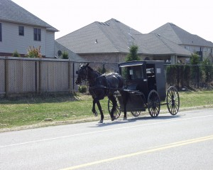 Amish buggy in modern neighborhood in Oxford County, Ontario