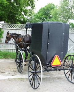 Amish buggy and horse parked in a lot in Oxford COunty