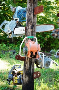 Chainsaw Totem Pole - Medford, Wisconsin