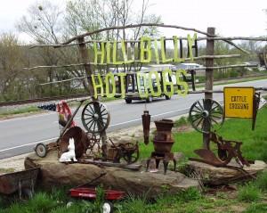 Hillbilly Hot Dogs - Lesage, West Virginia