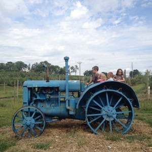 The kids can climb on old tractors...at Arbor Day Farm in Nebraska City