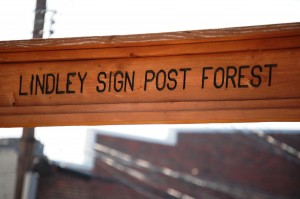 Lindley Sign Post Forest Sign