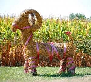The famous Straw Goat from Swedesburg.