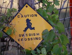 Caution - Swedish Crossing in Swedesburg, IA