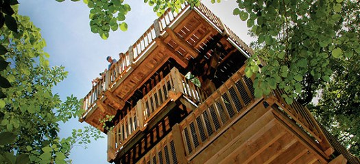 Arbor Farm Tree House - 50 feet tall