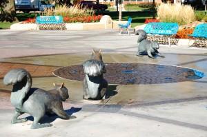 Black Squirrels in Bayliss Park