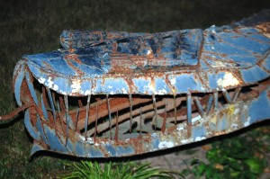 Dimetrodon's Sharp Teeth - watch out!!