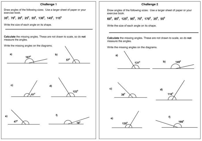 Drawing and Missing Angles Worksheet Year 5   Lesson ...