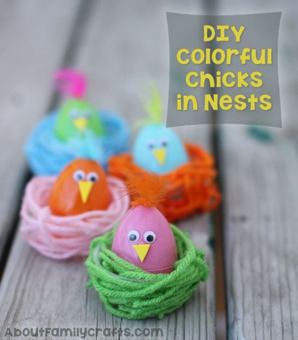 Colorful Chicks in Nests