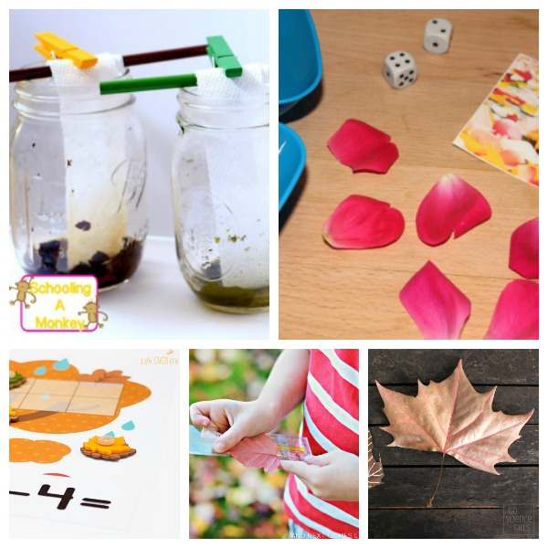 fall STEM activities for kids
