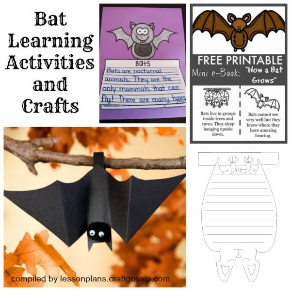 Bat crafts and learning activities for kids.