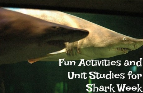 Celebrate Shark Week with Shark Unit Studies and Activities