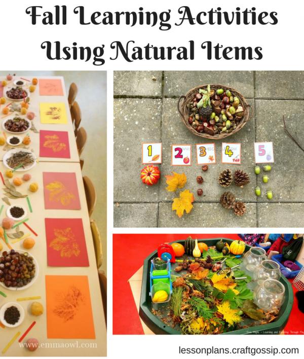 fall learning activities using natural materials