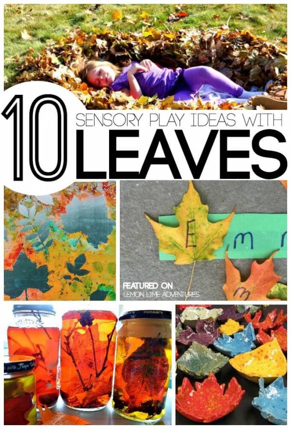 fall sensory ideas with leaves