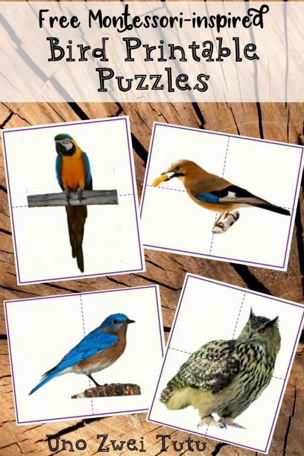 printable bird puzzles