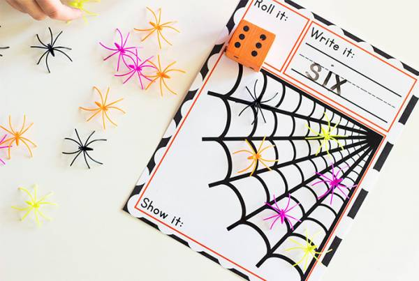 spider web roll and count