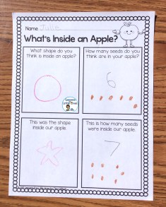 apple experiment page
