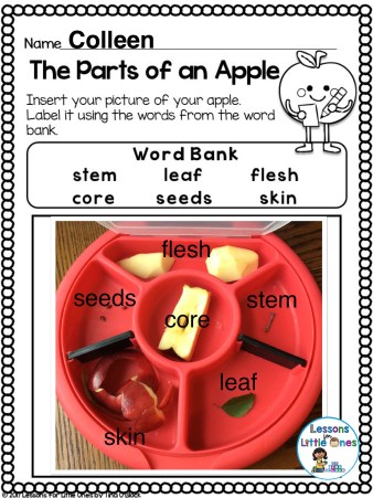 apple sorting tray page Pic Collage